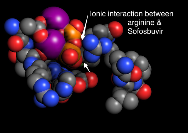 Amino acids that interact with Sovaldi® are drawn with in a space filling mode and colored by element in Molecule World.