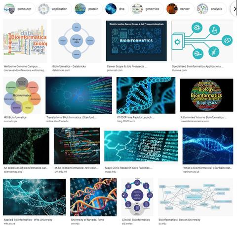 Bioinformatics from google