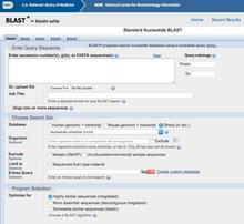 NCBI BLAST UI