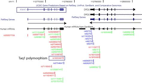 i-3e86042aa0425e2ccbddaaa31519953f-hgt_genome_1b2e_994ec0.png
