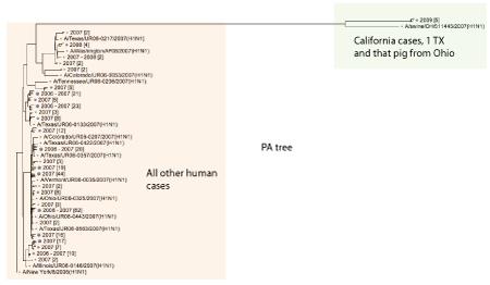 i-b4fe328cce596dda8fa6cdee3c50749f-PA_tree.png