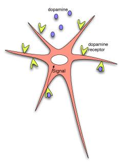 i-e1ad43d307ff00254c19667997d9daa7-neuron.png